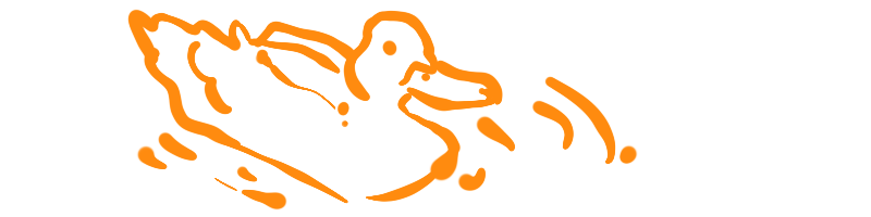 Duck meditation is one of the 7 ideas for hidden self-care for therapists