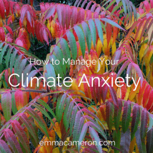 How to Manage Your Climate Anxiety